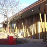 envivo_waiheke_island_library_structural_engineering