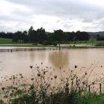 Envivo_Auckland_Council_Flood_Surveyors