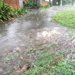 Envivo_civil_engineering_Auckland_flooding_overflowing_drains