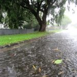 Envivo_civil_engineering_Auckland_stormwater_flooding