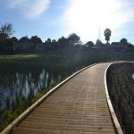 Envivo_Brylee_Reserve_Wetland_Takanini_structural_Engineering_transformation_park_boardwalk
