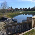 Envivo_Brylee_Reserve_Wetland_Takanini_structural_Engineering_transformation_pond_forebay